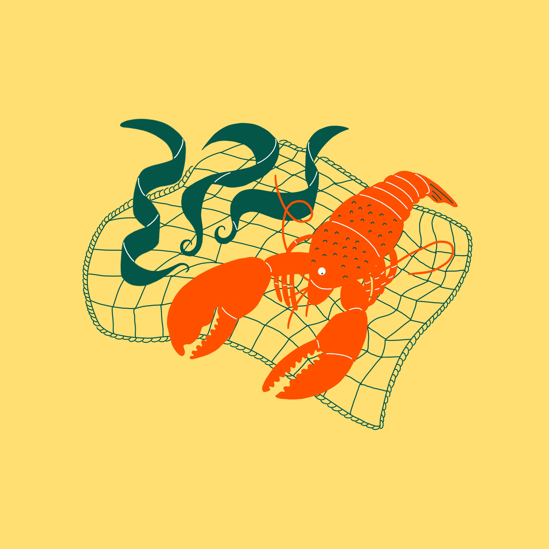 FxD_Ep5_Kelp